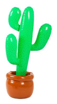 Opblaas cactus 20571.
